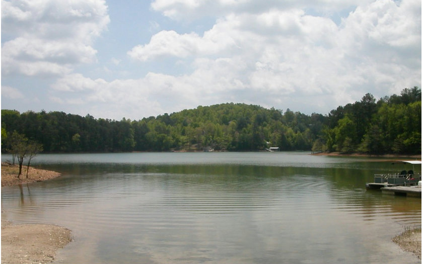 252496 Blairsville Lake Front Lot