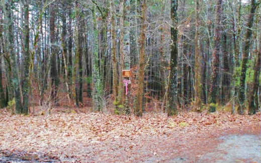 235097 Morganton Vacant Lot