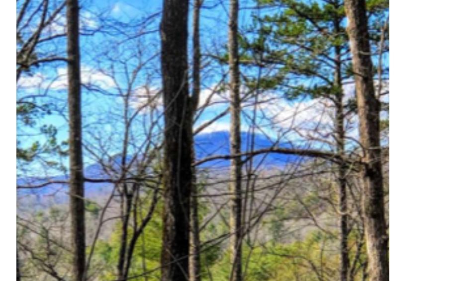 289497 Blue Ridge