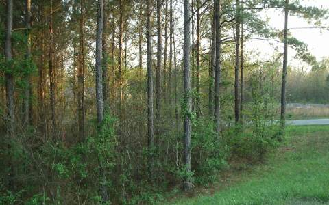 218398 Chatsworth, GA Vacant Lot