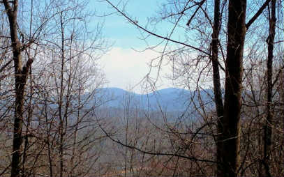 263398 Blue Ridge