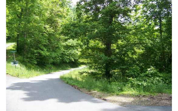 267298 Brasstown Vacant Lot