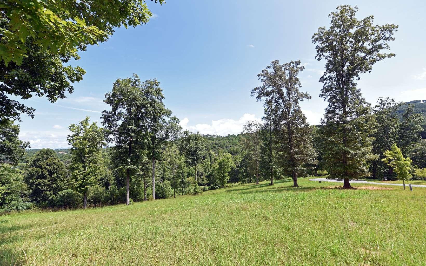 300098 Blairsville River Access Lot