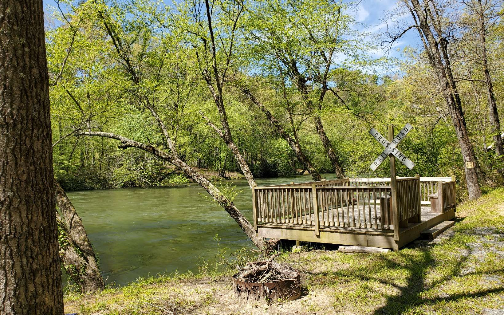 295499 Mineral Bluff River Front